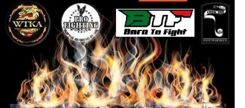 "BTF – University of Fighting ""THE DESTROYERS"""